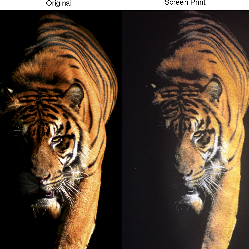 sidebyside-tiger-simulated-process-color-print